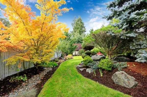 landscaping ideas backyard & front