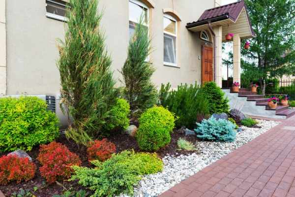 landscaping ideas backyard & front