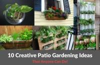 10 Creative Patio Gardening Ideas :: YardYum - Garden Plot ...