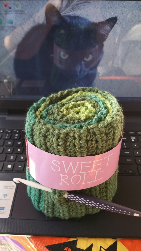Premier Yarns Sweet Roll Review