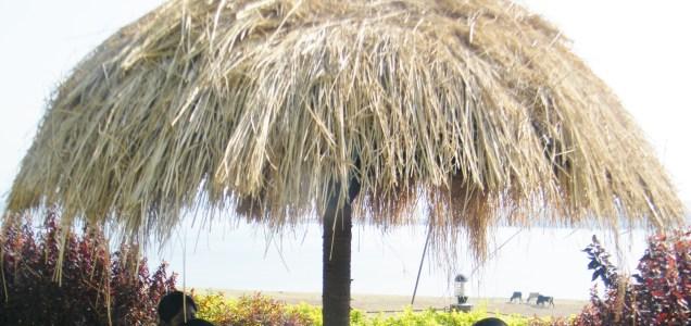 A straw garden umbrella