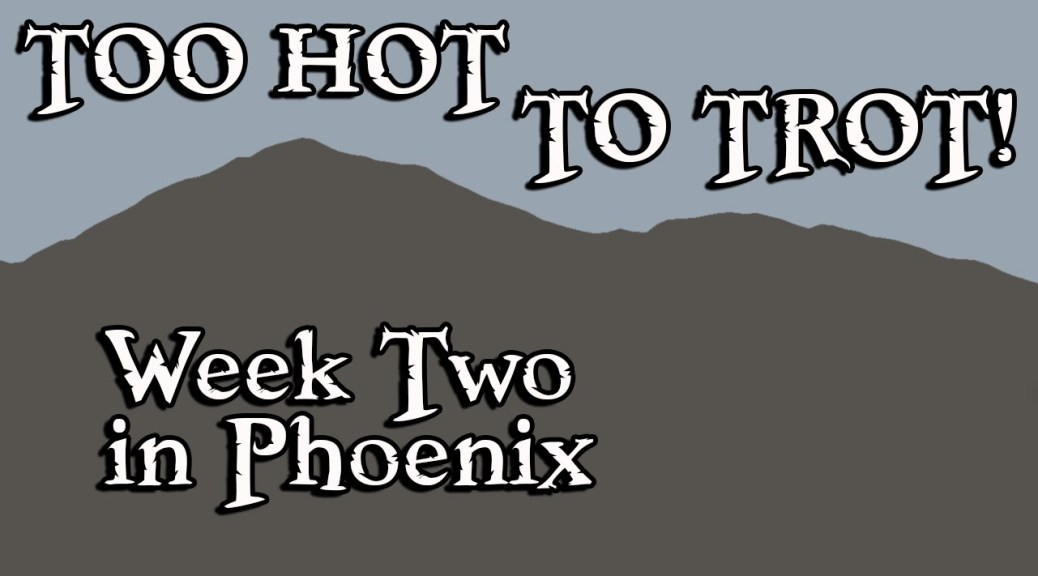 Two Weeks in Phoenix – Too Hot to Trot!