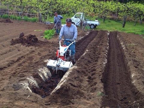 家庭菜園の土作り 炭