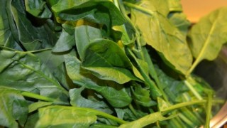 ホウレン草の作り方 ホウレン草の後に植える野菜