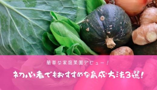 簡単な家庭菜園デビュー!初心者でもおすすめな育成方法3選!