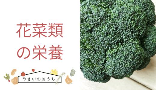 花菜類の栄養と効能 ブロッコリーと食べ合わせが良いのは?