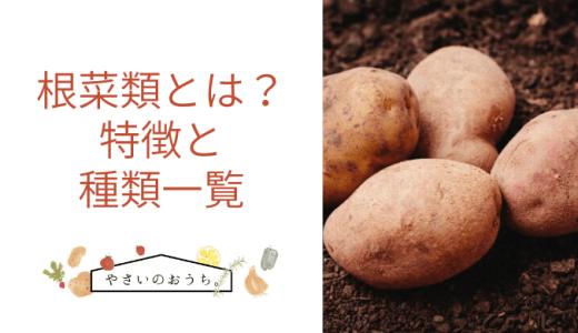 根菜類とは?特徴や種類 かぼちゃ玉ねぎは入る?