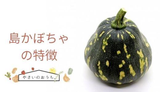島かぼちゃの特徴や旬の時期!甘味はなく乾燥して長期保存