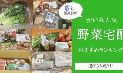 『安い&人気』野菜宅配・通販おすすめランキング!厳選6社を徹底比較したものをご紹介