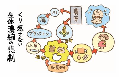 秋川の全植商品