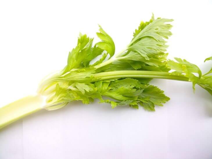 セロリの紹介!セロリはこんな野菜です