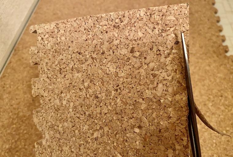 コルクマットの敷き方の画像20。コルクマットが床とピッタリ合わなかったので、ハサミで切って微調整しています。