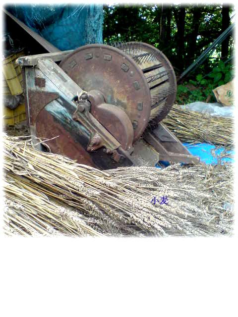 足ふみ脱穀機、戦前に作られたであろう年代ものを拾ってきた。