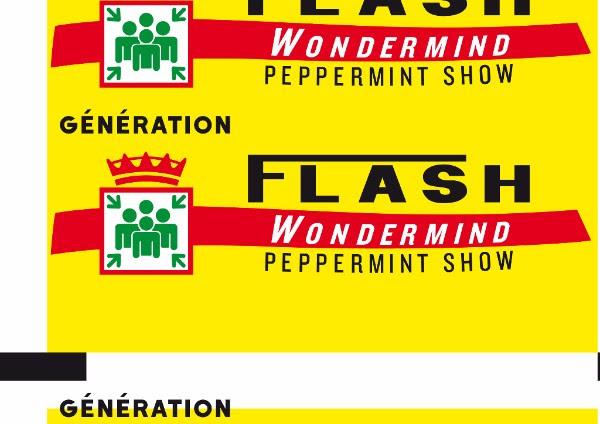 Génération Flash exposition du 30 mars au 10 avril 2017