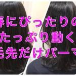 春にぴったりのたっぷり動きのあるパーマ【かえでさん】の髪 | 文京区【パーマ美容師】
