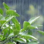 """梅雨に向けてのストレートパーマ""""いつかけますか?"""""""