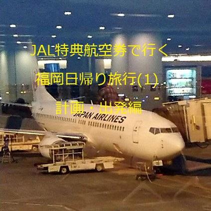 JAL特典航空券で行く福岡日帰り旅行(1) 計画・出発編
