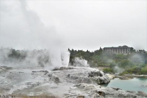 Pohutu Geyser after eruption