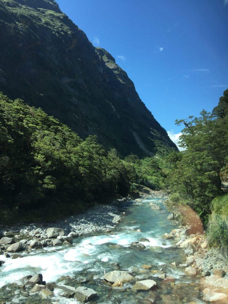 Cleddau River near Milford Sound in Firdland National Park, New Zealand