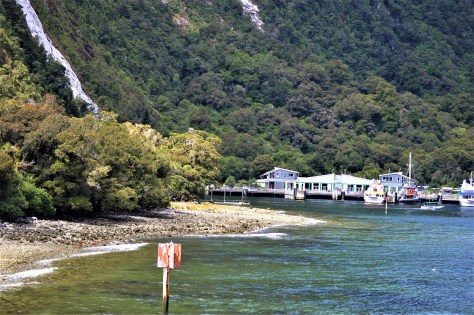 Wharf at Milford Sound, New Zealand