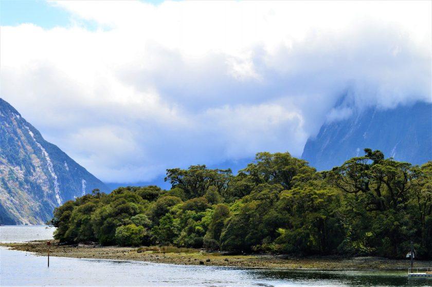 Fresh Water Basin in Milford Sound, New Zealand
