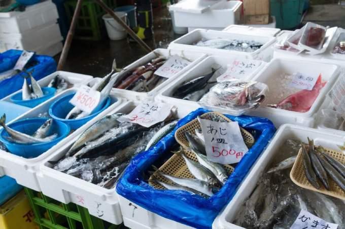 漁業がさかんな地域ランキング|漁業生産量:中学受験の地理対策の要点