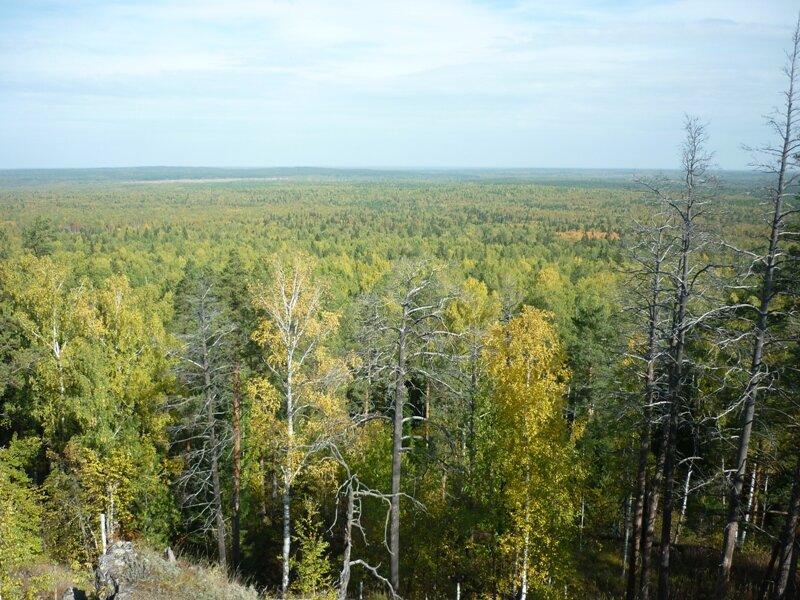 вид с горы Целовальникова