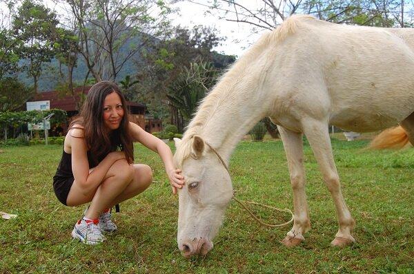 лошади, водопад Янг бей