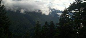 лес Форк США