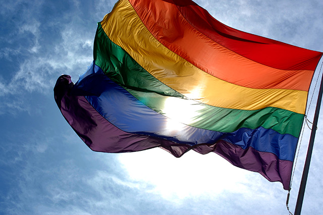 Rainbow Flag (Image Courtesy: Wikipedia)