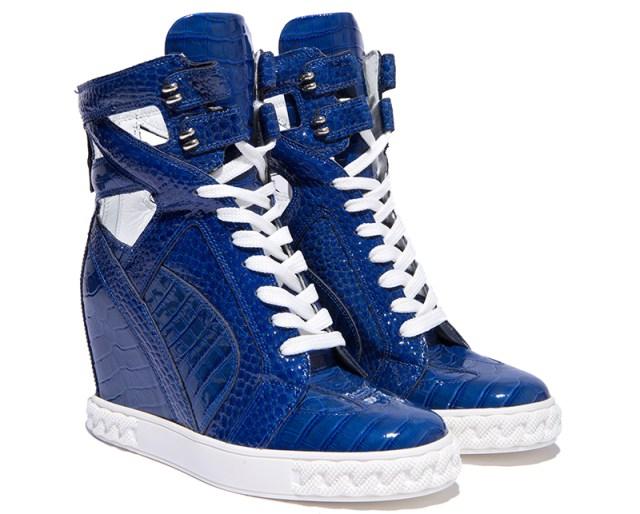 Модные синие сникерсы от Casadei – фото новинки и тренды сезона