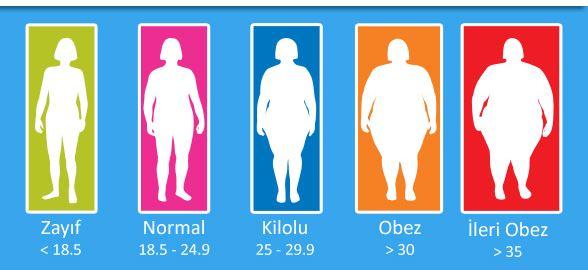 obez-oranlari