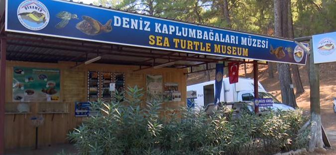 dalyan-deniz-kaplumbagalari-muzesi