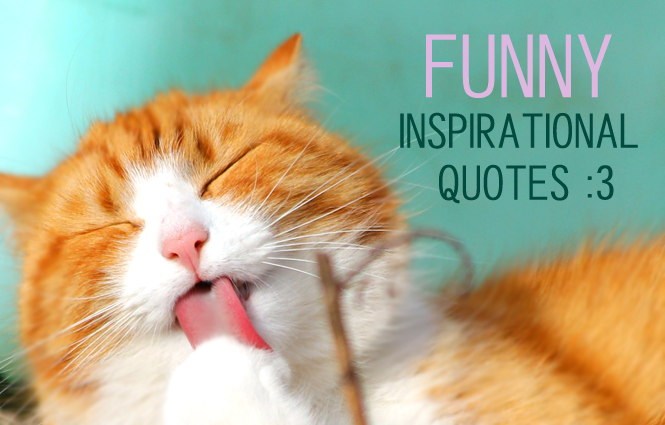 19 funny inspirational quotes