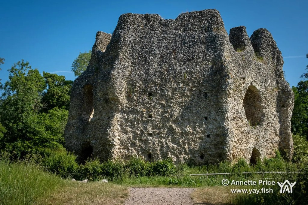 Odiham Castle, Greywell, Hampshire, UK.