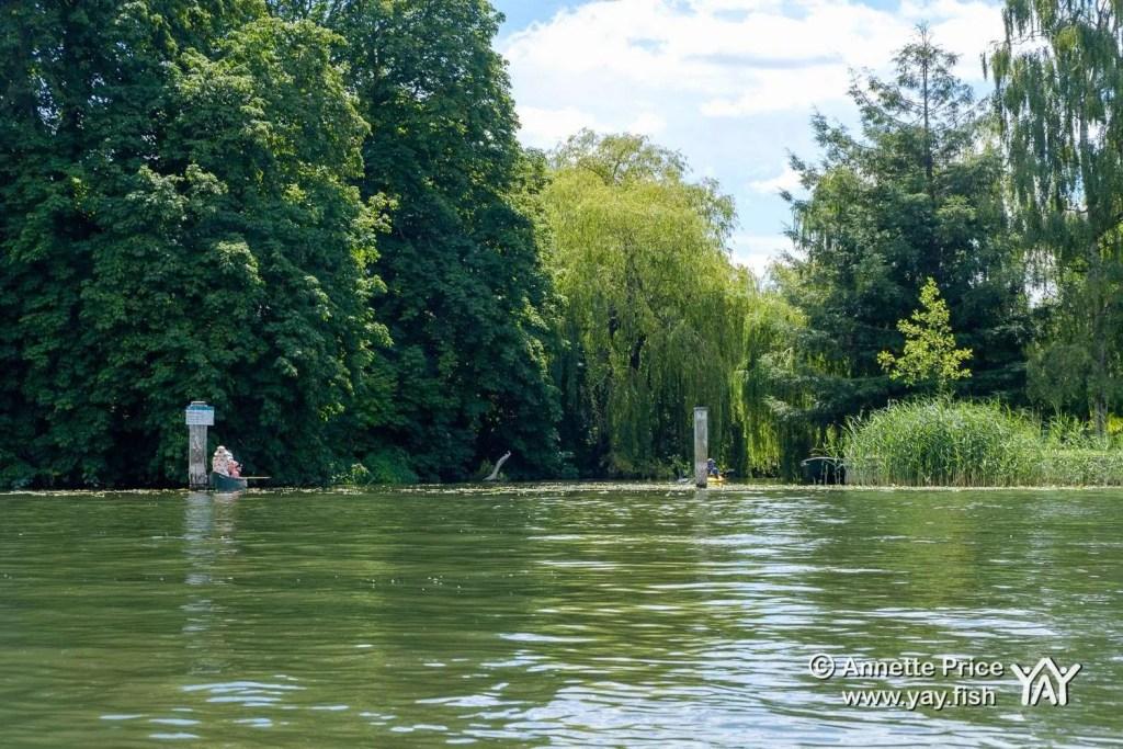 River Thames near Shiplake, UK.