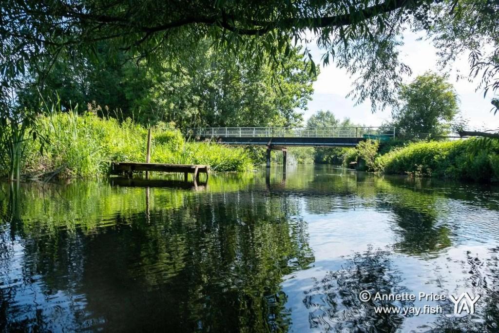 St Patrick's Stream, near Shiplake, UK.