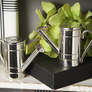 Culinary Concepts – Watering Can Salt & Pepper Set in Presentation Gift Box