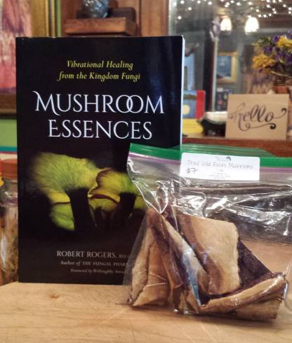 Dried mushrooms and book from the lending library
