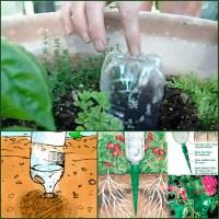 Urban Vegetable Garden for Small Spaces & Balconies ...