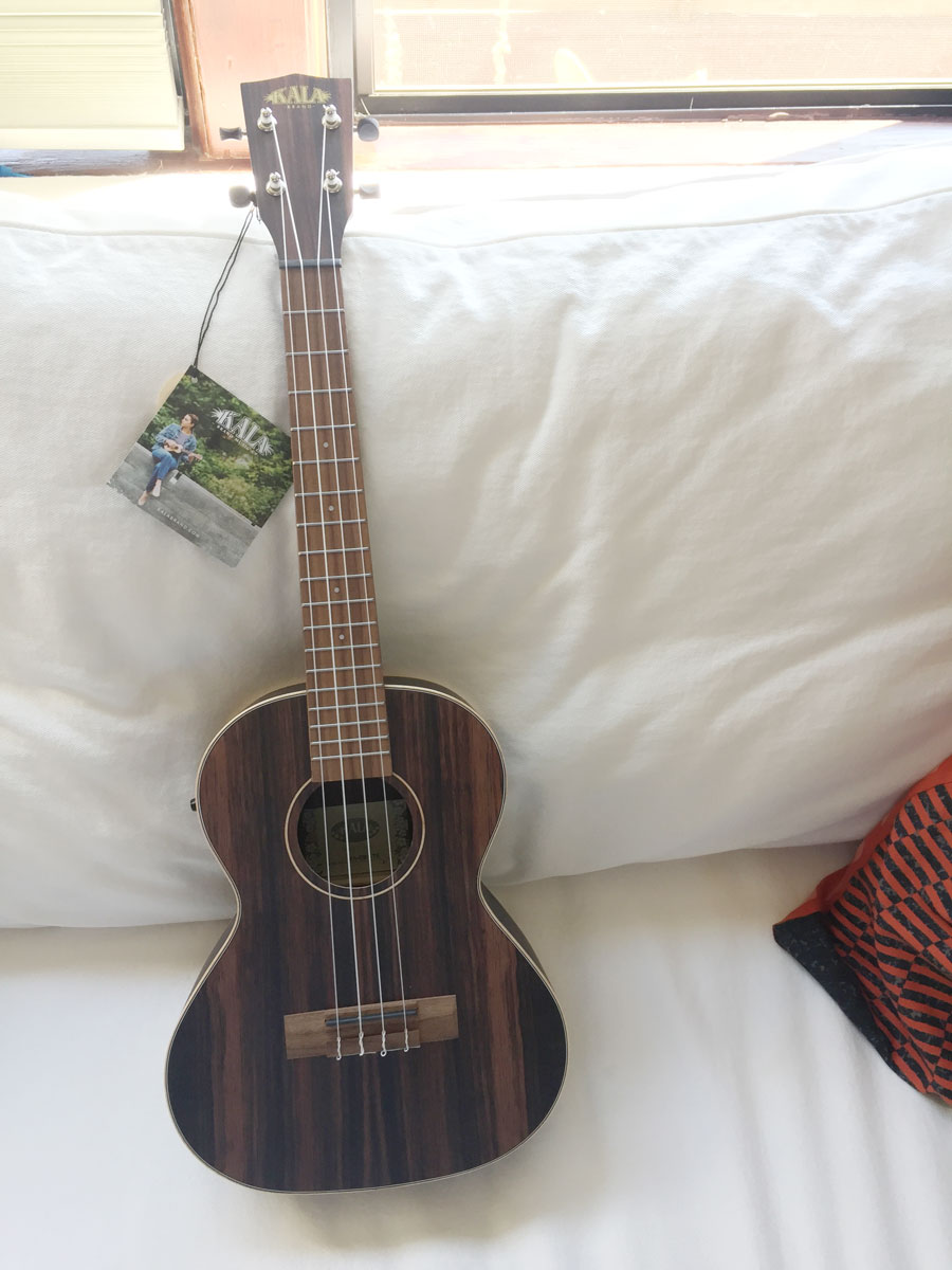 Photo of a Kala brand striped ebony wood tenor ukulele
