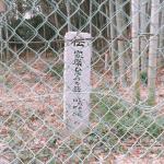 ひそみの藪
