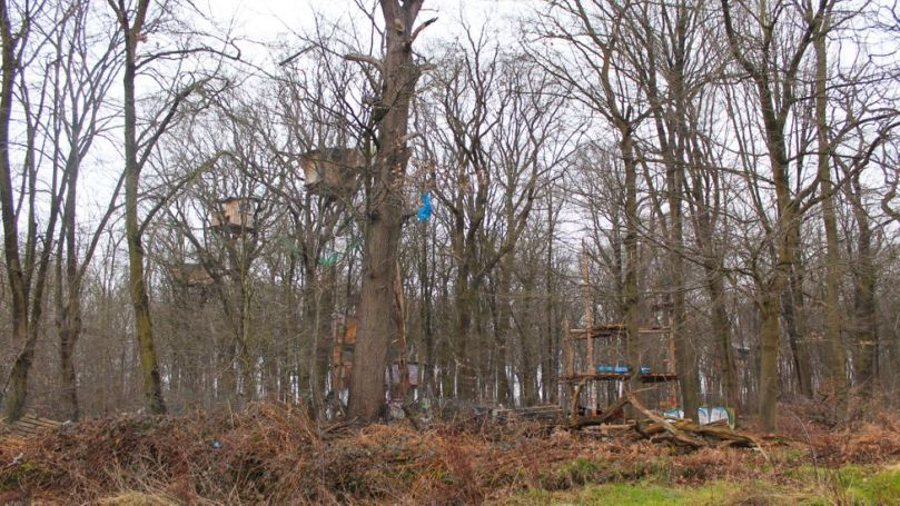 Environmental activists are fighting to save parts of the nearby Hambach forest from coal mine expansion (Credit: Jessica Bateman)