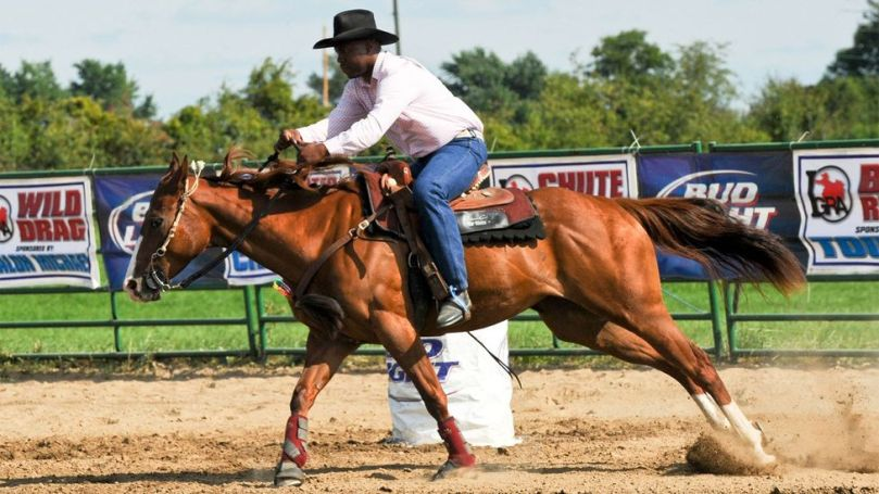 In addition to offering inner-city kids an alternative to the street, Murdock hopes to honour Chicago's horse-riding legacy (Credit: Brigette Supernova/Alamy)