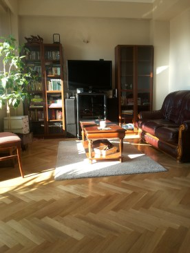 Living room - furnished