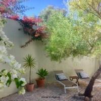 Quinta Maragota - peacefulness & nature, close to beach & fishing village Fuseta (3km)
