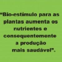 Biologia da Construção na Agricultura