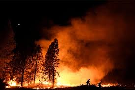 Trump approves California into a state of major disaster due to wildfires