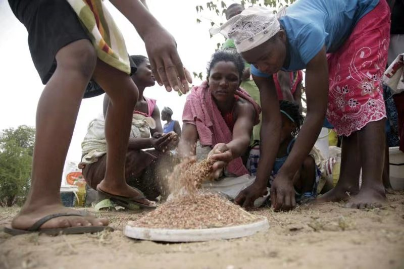 World Food Programme: Drought + COVID-19 Zimbabwe's child nutrition and food security deteriorate rapidly
