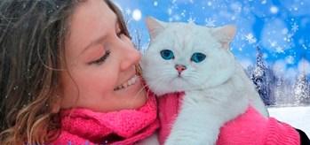 кошка с девушкой